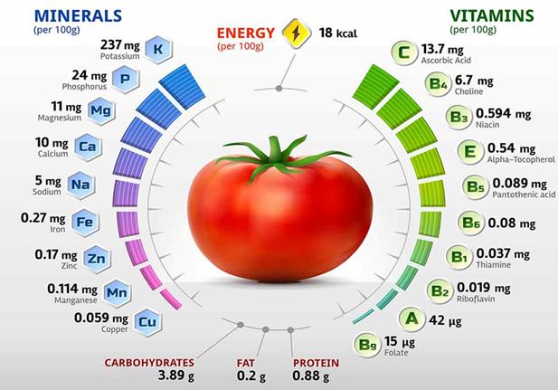 næringsindhold i tomater